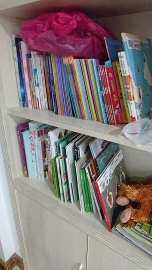 宫西达也恐龙系列6册 精装收藏版 蒲蒲兰绘本遇到你真好 永远永远爱你 等3-6岁早教图画书 晒单图