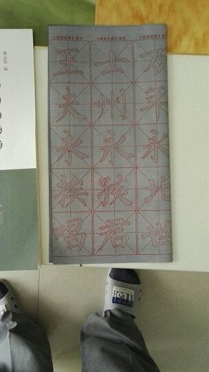 水写布临习字帖:赵孟頫楷书《千字文》 晒单图