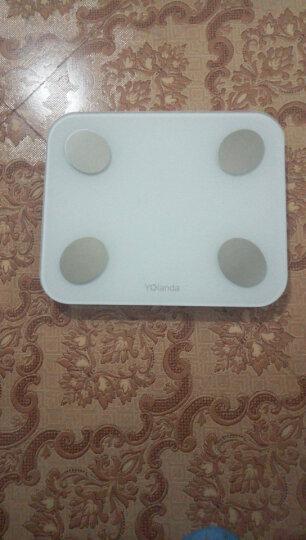 Yolanda 智能体脂秤脂肪秤 精准测体重脂肪仪 家用健康秤电子秤 13项身体指标 USB充电款 高雅白 晒单图