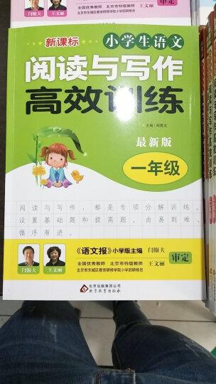 新课标 小学生语文阅读与写作高效训练 三年级(最新版) 晒单图