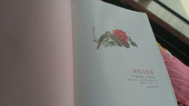 幻想国:夜莺与玫瑰(王尔德童话集·大师彩绘本) 晒单图