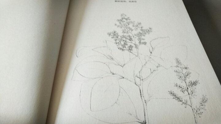 世界上最老最老的生命 博物文库·生态与文明系列 晒单图