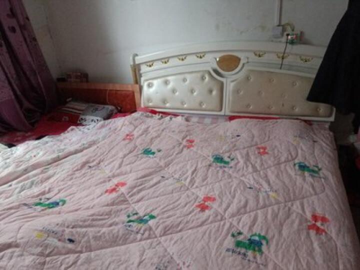 纯元家纺 可水洗机洗夏凉被 空调被 韩版夏天薄被子亲子款幼儿园夏被 印尼小象 150*200cm 晒单图