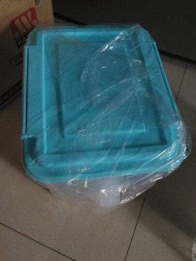 HAIXIN海兴冰箱收纳储物盒水果密封收纳箱食品鸡蛋盒组合装 天蓝色4.5L*2 带硅胶圈 晒单图