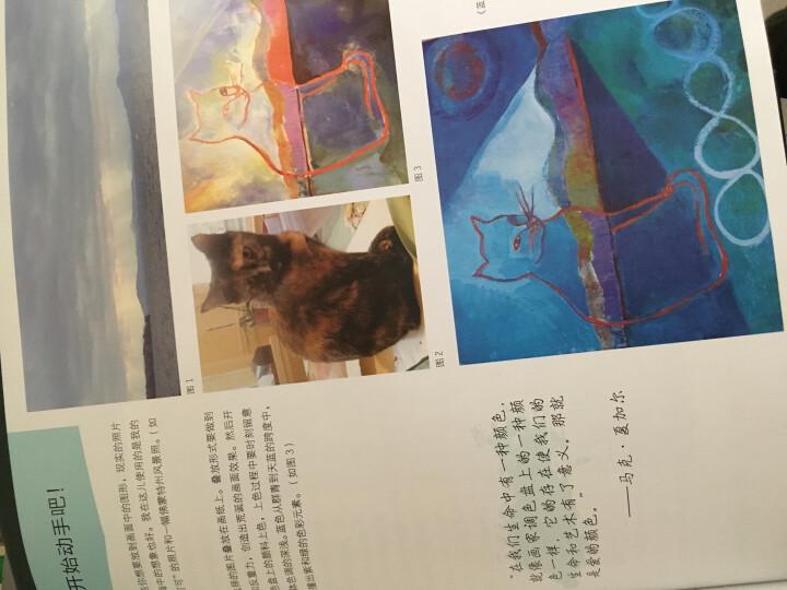 色彩创意实验室:52个综合材料的艺术实验 晒单图