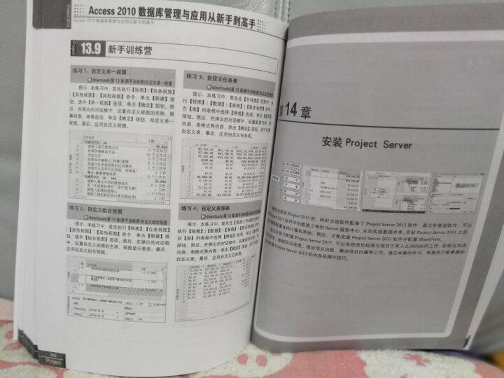 从新手到高手:Project2013中文版项目管理从新手到高手(附DVD光盘1张) 晒单图