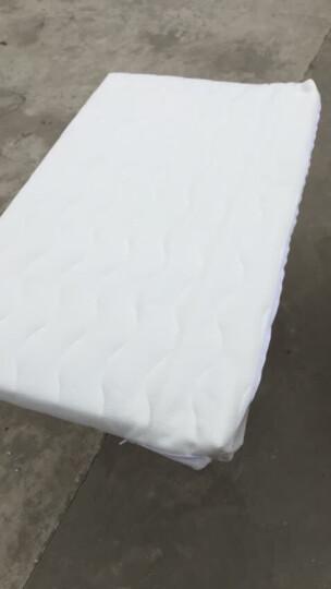 小龙哈彼(Happy dino) 婴儿床垫天然椰棕可拆洗宝宝床垫儿童床垫LMY288 小龙哈彼(双面白色厚4cm) 床垫111*64 晒单图