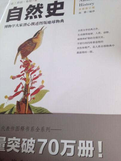 自然史 博物学大家潜心撰述图版地球物典 全新修订版 一本传世博物志,包括了地球史(1) 晒单图