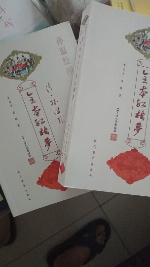 红楼梦原著3册/曹雪芹石头记孙温绘图插画四大名著古典文学 晒单图