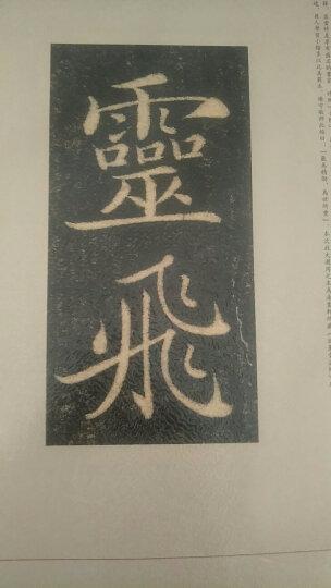 书法经典放大·铭刻系列28:怀仁集王羲之书圣教序(二) 晒单图