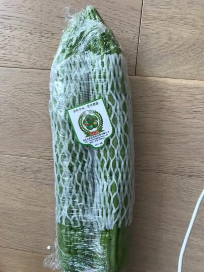 【寿光馆】圣德利苦瓜凉瓜新鲜蔬菜 蔬菜特产 500g 晒单图