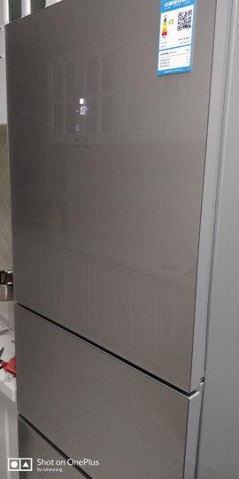 松下(Panasonic)237升玻璃面板三门冰箱  快速冷冻 欧式设计 尊雅银 NR-J24GM1-XS 晒单图