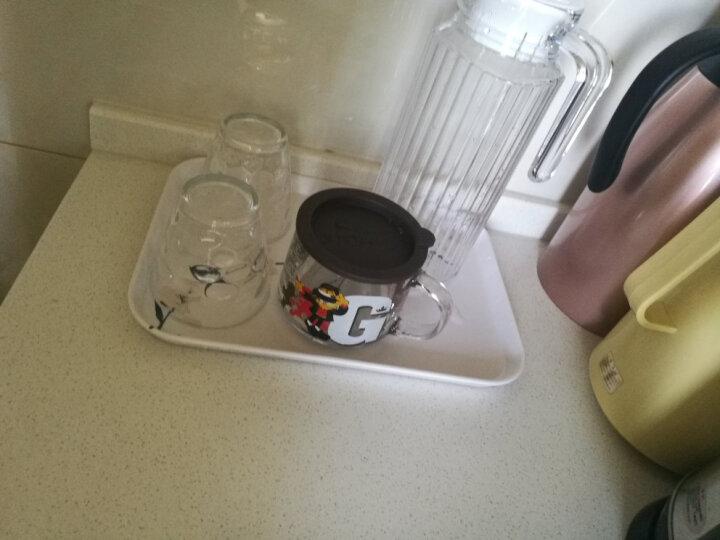 希尔茶盘长方形托盘塑料家用放杯子的水果水杯茶杯盘子 创意客厅北欧客厅酒店水果盘 梅三件套MEI87512/15/18 晒单图