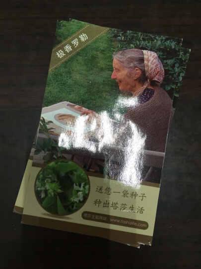 塔莎奶奶的美好生活2:创造你的生活乐趣 晒单图