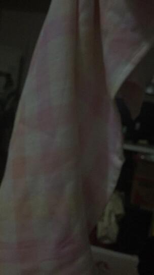 梦特娇(Montagut)毛巾家纺 纱布方格枕巾单条 纯棉柔软 亲肤吸汗 简洁大方 粉色 50x80cm/条 晒单图