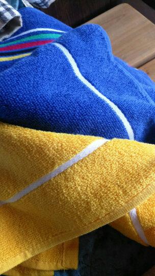 孚日洁玉纯棉毛巾 刺绣玫瑰柔软吸水亲肤一见倾心洁面洗脸巾2条装 34*76cm 粉+蓝 晒单图