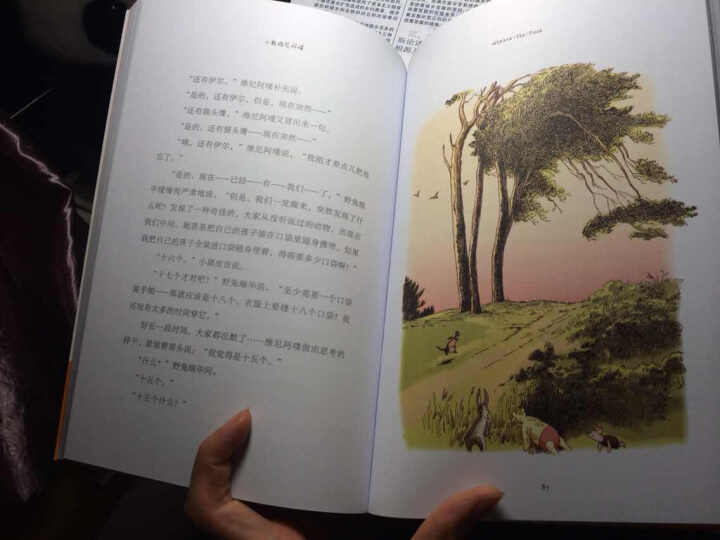 小熊维尼故事全集·90周年纪念版(全译彩绘本 套装共4册) 晒单图