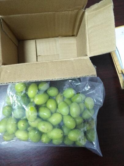 2018年现摘现发福建青橄榄果现摘新鲜水果生橄榄 500g 晒单图