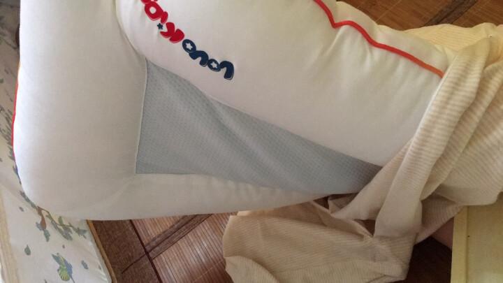 LOVO家纺 罗莱生活出品枕头儿童决明子荞麦壳枕头 决明子荞麦壳枕 35*55 晒单图