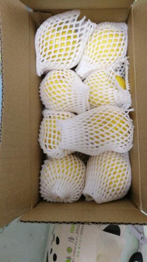 四川安岳黄柠檬 8颗 一级大果 单果约100-120g 新鲜水果 晒单图
