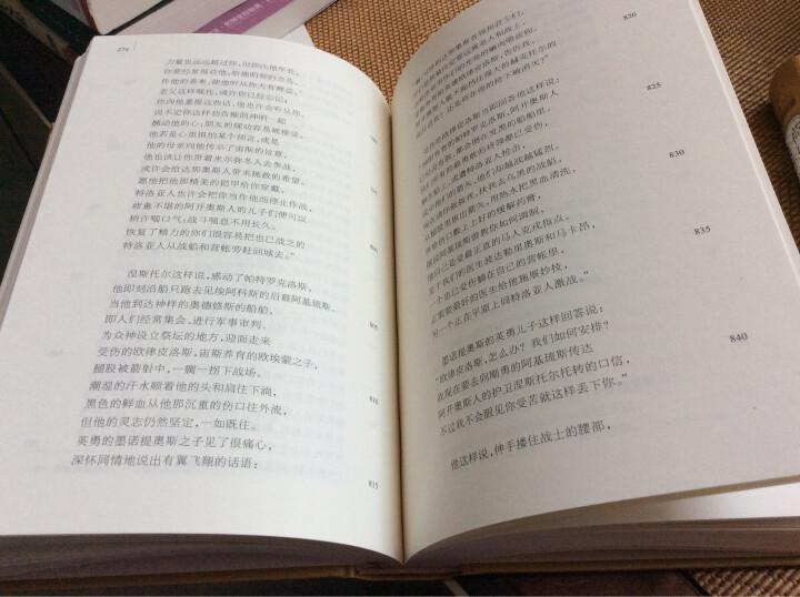 文学名著·译文名著精选:蝇王 晒单图