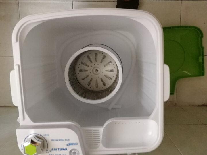 扬子(YANGZ) 宝宝婴幼儿小型单桶 半自动迷你波轮洗衣机赠沥水篮 65-688 晒单图
