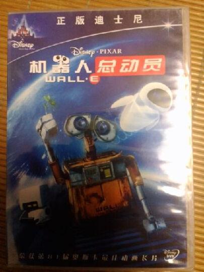 海底总动员(DVD) 晒单图
