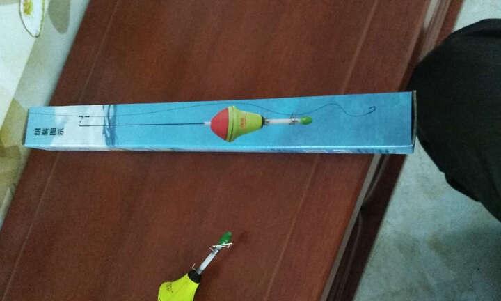 森日 自动钓鱼漂 钩器 钓鱼神器 我爱发明自动钓鱼浮漂弹射 渔具新品钓鱼用品 套装版 晒单图