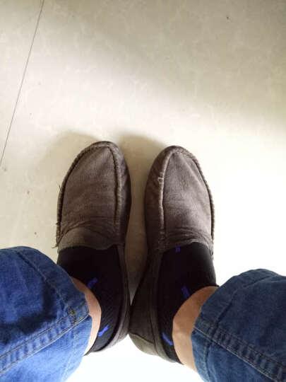 季希2018夏季透气男士韩版帆布休闲鞋潮流社会小伙豆豆鞋快手红人同款男鞋 褐色 41 晒单图