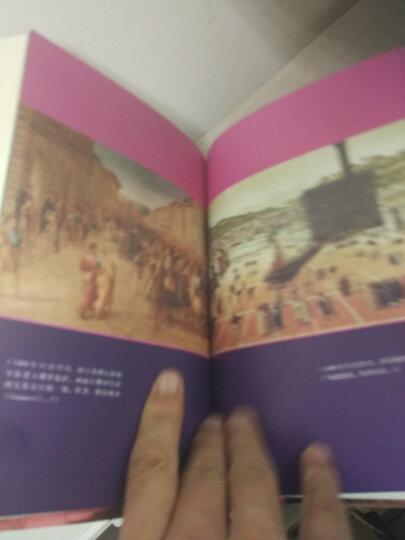 方闻中国艺术史著作全编:中国艺术史九讲(2016中国好书) 晒单图