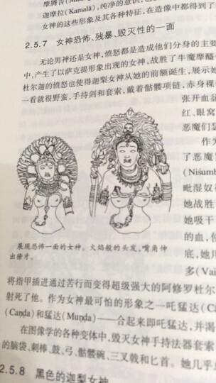 印度诸神的世界 印度教图像学手册 晒单图
