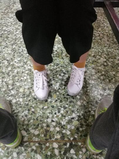 圣大保罗女鞋 拼色金属尾翼圆头深口系带小白鞋女厚底板鞋 白/金 36 晒单图