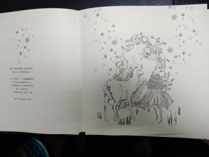 魔幻城堡:写给所有纯粹心灵的手绘涂色书(单面对开散页装) 晒单图