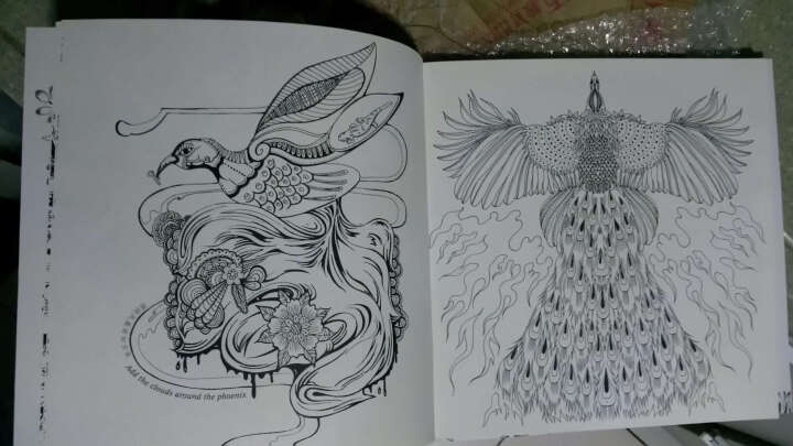 正版现货 魔幻花园 减压涂色书 韩国成人手绘填色书 艺术创意涂鸦秘密花园魔法森林奇幻梦境 晒单图