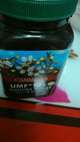 康蜜滋(cammells) 麦卢卡马努卡UMF12+蜂蜜500g新西兰原装进口Manuk 高于10+ 晒单图