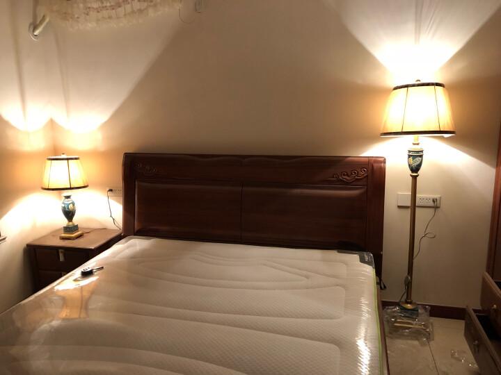 圣玛帝诺 创意美式落地灯 客厅卧室欧式落地台灯现代简约立式床头LED复古落地灯手绘树脂灯具 晒单图