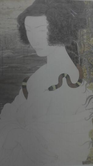 画境:张见工笔人物画探微 晒单图