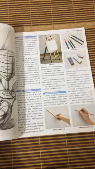 起跑线美术基础教学丛书:色彩静物 晒单图