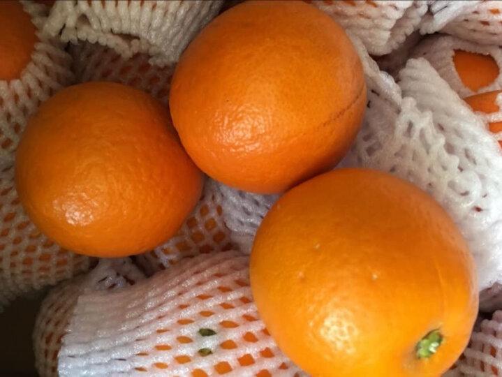 秭归脐橙 湖北夏橙 现摘橙子 2.5kg 55-65mm 晒单图