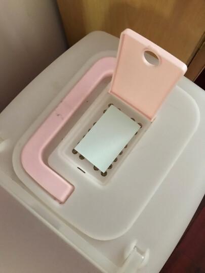 爱丽思IRIS猫厕所除臭片 猫砂盆活性炭包宠物除臭包防臭剂吸味片/单包售 晒单图