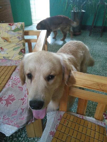 宠物冰垫狗狗汽车用品凉席垫子夏天冰垫 玫瑰红色经典款 XXL-90*105cm 晒单图