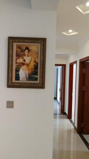 非常家饰 玄关装饰画欧式人物竖版走廊壁画过道挂画墙画 世界名画B383 60x80cm【世界名画系列】 晒单图