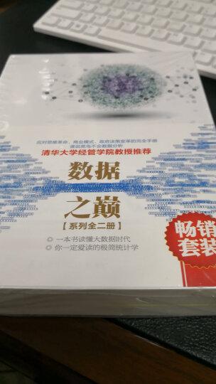 畅销套装 数据之巅系列:大数据时代+极简统计学(套装共2册) 晒单图