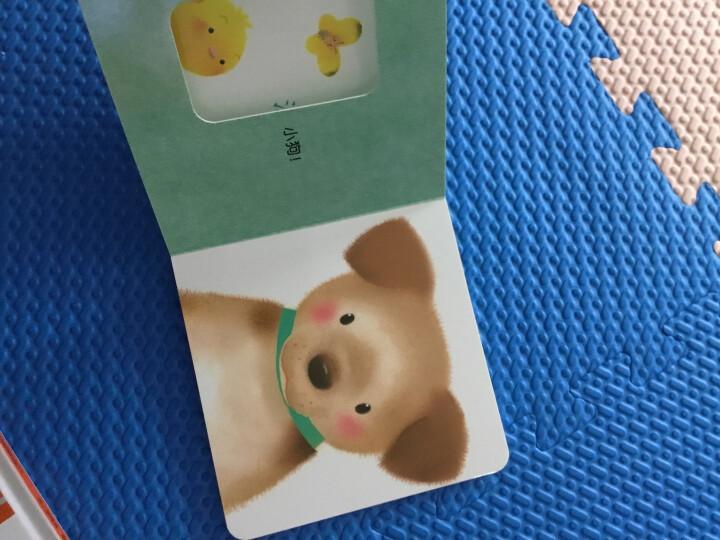 小鸡球球智慧屋(套装共3册) 晒单图