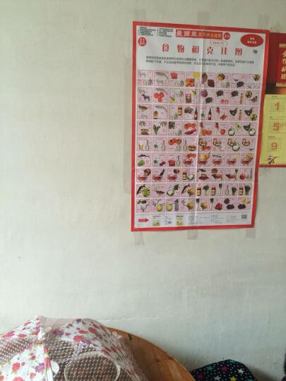 最简单实用养生挂图之6:食物相克挂图 晒单图