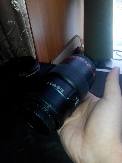 佳能(Canon) 单反相机微距镜头 EF-S 60mm f/2.8 USM 晒单图