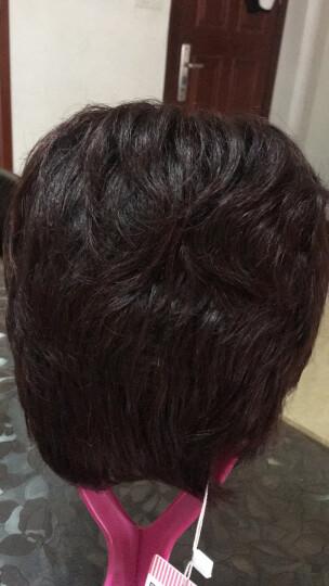 魅丝黛儿 假发 女短发中老年假发 短卷发妈妈真发 蓬松逼真假发套 钻石顶心-深棕色(大码) 晒单图