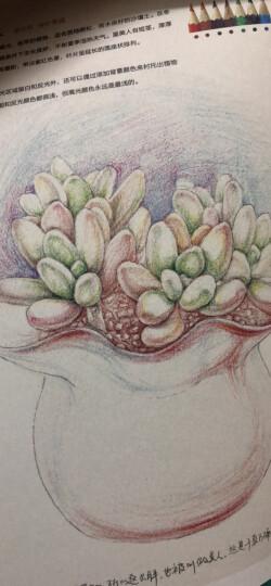 最手绘·绘多肉:多肉植物经典彩铅手绘图解(送书签) 晒单图