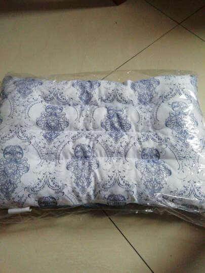 雅鹿 枕头 羽丝绒枕芯可水洗 学生枕头芯颈 椎枕保健枕 蓝色磁石枕(45*72cm) 一对装套装(枕头+枕套) 晒单图