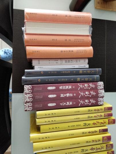 少年天子/长篇历史小说经典书系 晒单图